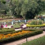 botanical_garden10