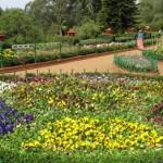 botanical_garden14