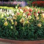 botanical_garden15