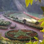 botanical_garden2
