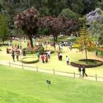 botanical_garden7