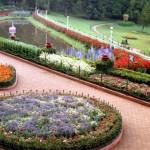 botanical_garden9